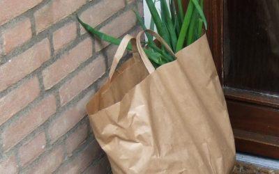 Biologische groentepakketten